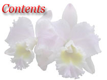 Articles About Orchids