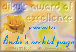 Diku's Award of Excellence 10/4/99