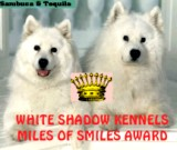 White Shadow Award 02/11/98
